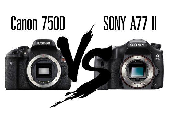 เลือกอะไรดีระหว่าง Canon 750D vs. Sony A77 II